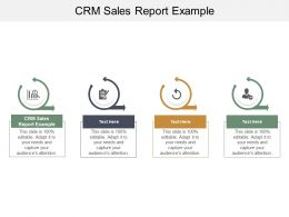 CRM Sales Report Example Ppt Powerpoint Presentation Icon Pictures Cpb