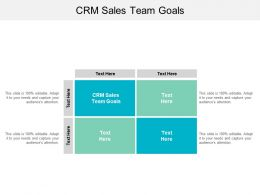 CRM Sales Team Goals Ppt Powerpoint Presentation File Example Introduction Cpb