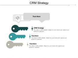 CRM Strategy Ppt Powerpoint Presentation Icon Portfolio Cpb