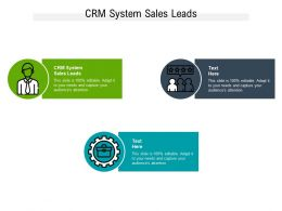 CRM System Sales Leads Ppt Powerpoint Presentation Icon Outline Cpb