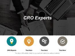 Cro Experts Ppt Powerpoint Presentation Infographics Portfolio Cpb