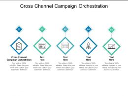 Cross Channel Campaign Orchestration Ppt Powerpoint Presentation Model Show Cpb