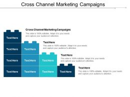 Cross Channel Marketing Campaigns Ppt Powerpoint Presentation Show Introduction Cpb