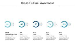Cross Cultural Awareness Ppt Powerpoint Presentation Infographics Format Ideas Cpb