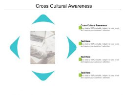 Cross Cultural Awareness Ppt Powerpoint Presentation Slides Infographic Template Cpb