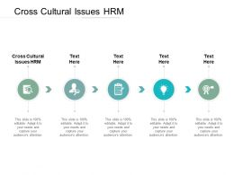 Cross Cultural Issues HRM Ppt Powerpoint Presentation Styles Picture Cpb