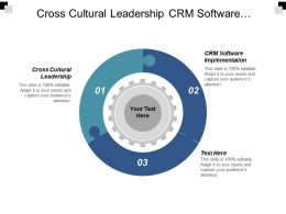 Cross Cultural Leadership Crm Software Implementation Employee Performance Survey Cpb