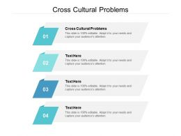 Cross Cultural Problems Ppt Powerpoint Presentation Portfolio Icon Cpb