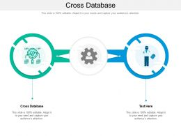 Cross Database Ppt Powerpoint Presentation Summary Images Cpb
