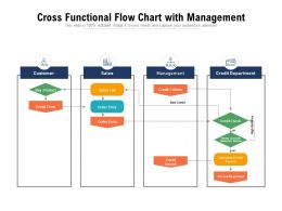 Cross Functional Flow Chart With Management