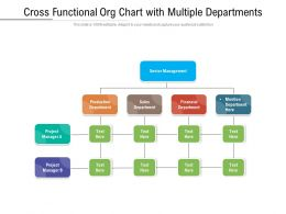 Cross Functional Org Chart With Multiple Departments