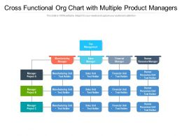 Cross Functional Org Chart With Multiple Product Managers