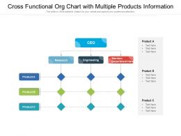 Cross Functional Org Chart With Multiple Products Information