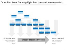 Cross Functional Showing Eight Functions And Interconnected