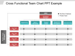 Cross Functional Team Chart Ppt Example