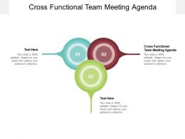 Cross Functional Team Meeting Agenda Ppt Powerpoint Presentation Layouts Graphic Images Cpb