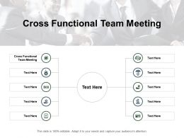 Cross Functional Team Meeting Ppt Powerpoint Presentation Gallery Styles Cpb