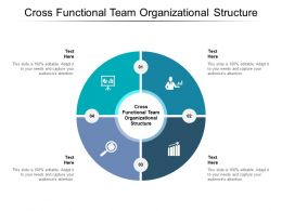 Cross Functional Team Organizational Structure Ppt Powerpoint Presentation Model Show Cpb