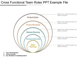 Cross Functional Team Roles Ppt Example File