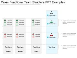 Cross Functional Team Structure Ppt Examples