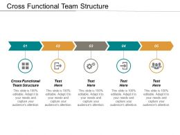 Cross Functional Team Structure Ppt Powerpoint Presentation Model Tips Cpb