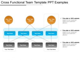 Cross Functional Team Template Ppt Examples