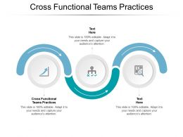 Cross Functional Teams Practices Ppt Powerpoint Presentation Outline Template Cpb