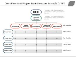 Cross Functions Project Team Structure Example Of Ppt