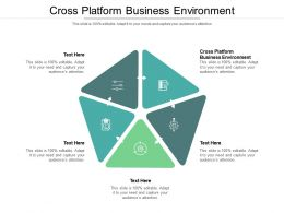 Cross Platform Business Environment Ppt Powerpoint Presentation Show Layouts Cpb