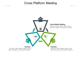 Cross Platform Meeting Ppt Powerpoint Presentation File Example Cpb