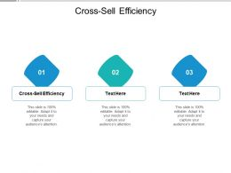 Cross Sell Efficiency Ppt Powerpoint Presentation Professional Outfit Cpb