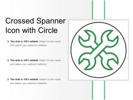 Crossed Spanner Icon With Circle