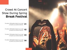 Crowd At Concert Show During Spring Break Festival
