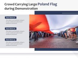 Crowd Carrying Large Poland Flag During Demonstration