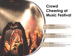Crowd Cheering At Music Festival