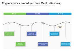 Cryptocurrency Procedure Three Months Roadmap