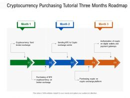 Cryptocurrency Purchasing Tutorial Three Months Roadmap