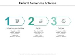 Cultural Awareness Activities Ppt Powerpoint Presentation Backgrounds Cpb