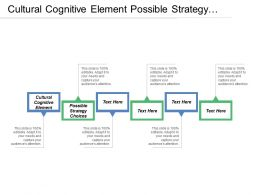 Cultural Cognitive Element Possible Strategy Choices Internal Business Analysis
