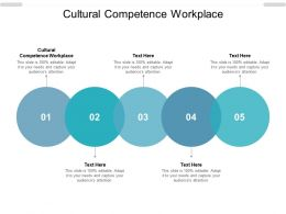 Cultural Competence Workplace Ppt Powerpoint Presentation Icon Vector Cpb