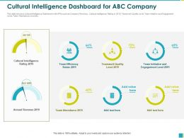 Cultural Intelligence Dashboard For ABC Company Team Efficiency Ppt Powerpoint Presentation File Icon