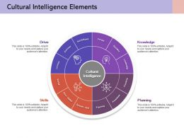 Cultural Intelligence Elements Self Efficacy Extrinsic Values Intrinsic Systems