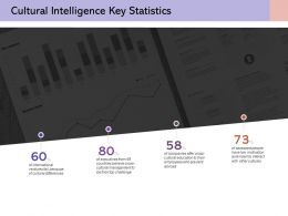 Cultural Intelligence Key Statistics Finance Investment Analysis