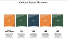 Cultural Issues Business Ppt Powerpoint Presentation Professional Slide Portrait Cpb