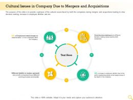 Cultural Issues In Company Due To Mergers And Acquisitions Decision Making Ppt Graphics