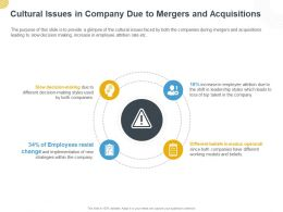 Cultural Issues In Company Due To Mergers And Acquisitions Ppt Powerpoint Presentation Ideas