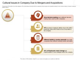 Cultural Issues In Company Due To Mergers And Acquisitions Top Ppt Powerpoint Presentation Show