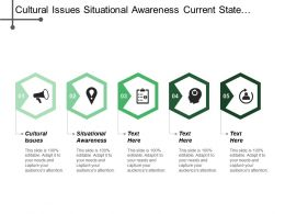 Cultural Issues Situational Awareness Current State Future Needs