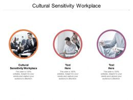 Cultural Sensitivity Workplace Ppt Powerpoint Presentation Model Show Cpb