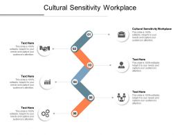 Cultural Sensitivity Workplace Ppt Powerpoint Presentation Show Layout Cpb